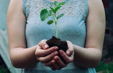 Άνοιξη και Κήπος